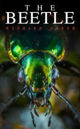 The Beetle - A Supernatural Thriller Novel