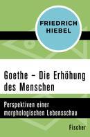 Friedrich Hiebel: Goethe