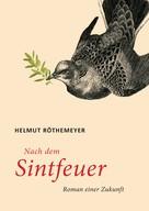 Helmut Röthemeyer: Nach dem Sintfeuer