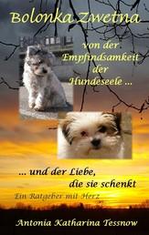 Bolonka Zwetna - Von der Empfindsamkeit der Hundeseele und der Liebe, die sie schenkt - ein Ratgeber mit Herz
