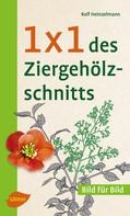 Rolf Heinzelmann: 1 x 1 des Ziergehölzschnitts ★★★★