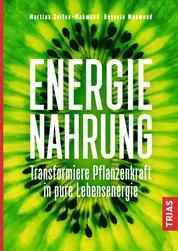 Energienahrung - Transformiere Pflanzenkraft in pure Lebensenergie