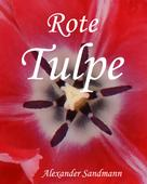Alexander Sandmann: Rote Tulpe