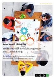 Interkulturelles Projektmanagement und Teamführung - Ein Leitfaden für die Zusammenarbeit zwischen internationalen Organisationen und Partnern