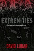 David Lubar: Extremities