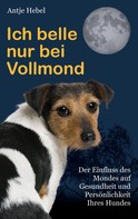 Antje Hebel: Ich belle nur bei Vollmond
