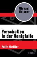 Michael Molsner: Verschollen in der Honigfalle ★★★