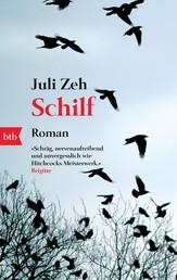 Schilf - Roman