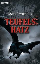 Teufelshatz - Die Chroniken des Hagen von Stein 2 - Roman