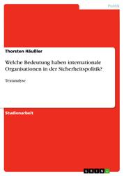 Welche Bedeutung haben internationale Organisationen in der Sicherheitspolitik? - Textanalyse