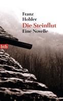 Franz Hohler: Die Steinflut ★★★★★