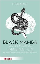 Black Mamba oder die Macht der Imagination - Wie unser Gehirn die Wirklichkeit bestimmt