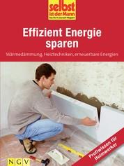Effizient Energie sparen - Profiwissen für Heimwerker - Wärmedämmung, Heiztechniken, erneuerbare Energien