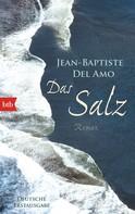 Jean-Baptiste Del Amo: Das Salz ★★★★
