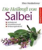 Die Heilkraft von Salbei - Antibakteriell - Schweißhemmend - Verdauungsfördernd