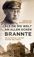 Bernhard Schmidtbauer: Als ob die Welt an allen Ecken brannte ★★★★