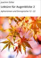 Joachim Stiller: Lektüre für Augenblicke 2