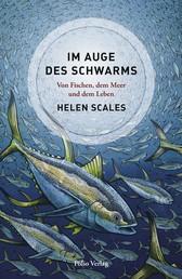 Im Auge des Schwarms - Von Fischen, dem Meer und dem Leben