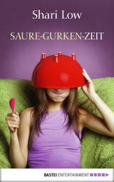 Saure-Gurken-Zeit - Roman