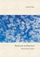 Lorenz Filius: Bewusstsein um Bewusstsein