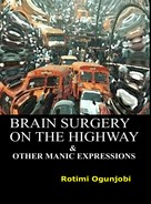 Rotimi Ogunjobi: Brain Surgery on the Highway and Other Manic Expressions