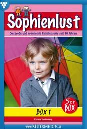 Sophienlust 5er Box 1 – Familienroman - E-Book 1-5