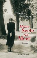 Richard Scrimger: Meine Seele ein Meer