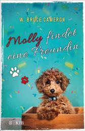 Molly findet eine Freundin - Band 3