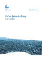 Carlos Recamán Arcay: La niebla