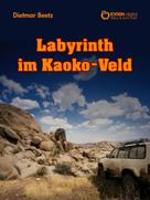 Dietmar Beetz: Labyrinth im Kaoko-Veld ★★★★★