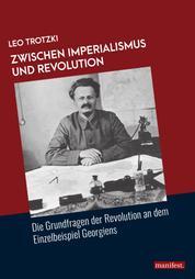 Zwischen Imperialismus und Revolution - Die Grundfragen der Revolution an dem Einzelbeispiel Georgiens
