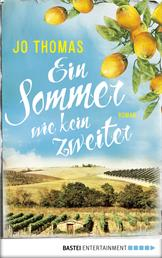 Ein Sommer wie kein zweiter - Roman