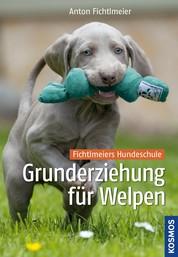 Grunderziehung für Welpen - Fichtlmeiers Hundeschule