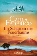 Carla Federico: Im Schatten des Feuerbaums ★★★★
