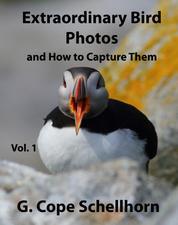 Extraordinary Bird Photos and How to Capture Them Vol. 1
