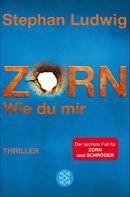 Stephan Ludwig: Zorn - Wie du mir ★★★★