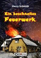 Harry Schmidtt: Ein beschneites Feuerwerk