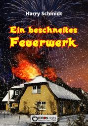 Ein beschneites Feuerwerk - Sinnsuche und Liebesleben der Ulrike B. in zwei Systemen