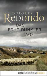 Das Echo dunkler Tage - Kriminalroman