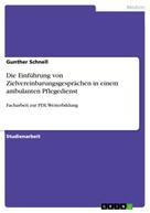 Gunther Schnell: Die Einführung von Zielvereinbarungsgesprächen in einem ambulanten Pflegedienst