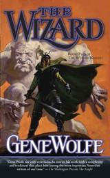 The Wizard - Book Two of The Wizard Knight