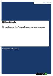 Grundlagen der Assemblerprogrammierung