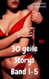 30 geile Storys Band 1-5 - Mega Sex Sammelband