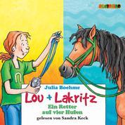 Ein Retter auf vier Hufen - Lou + Lakritz 4