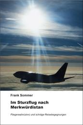 Im Sturzflug nach Merkwürdistan - Fliegerwahn(sinn) und schräge Reisebegegnungen
