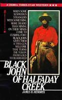 James Beardley Hendryx: Black John of Halfaday Creek