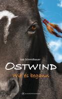 Lea Schmidbauer: Ostwind - Wie es begann