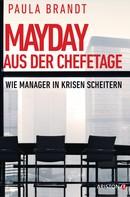 Paula Brandt: Mayday aus der Chefetage