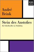 Andre Brink: Stein des Anstoßes