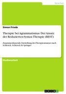 Simon Friede: Therapie bei Agrammatismus: Der Ansatz der Reduzierten-Syntax-Therapie (REST)